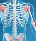 强直性脊柱炎有哪些检查方法